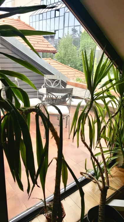 RENTED!!!!Vila Exclusivista | Primaverii | Herastrau | 315 sqm | D P E M
